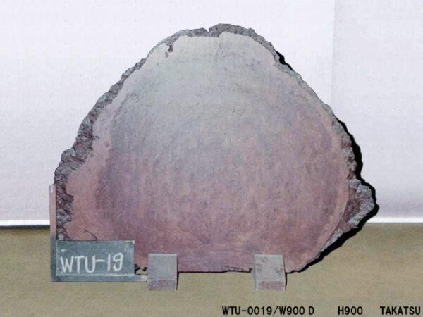 A1-WTU-0019